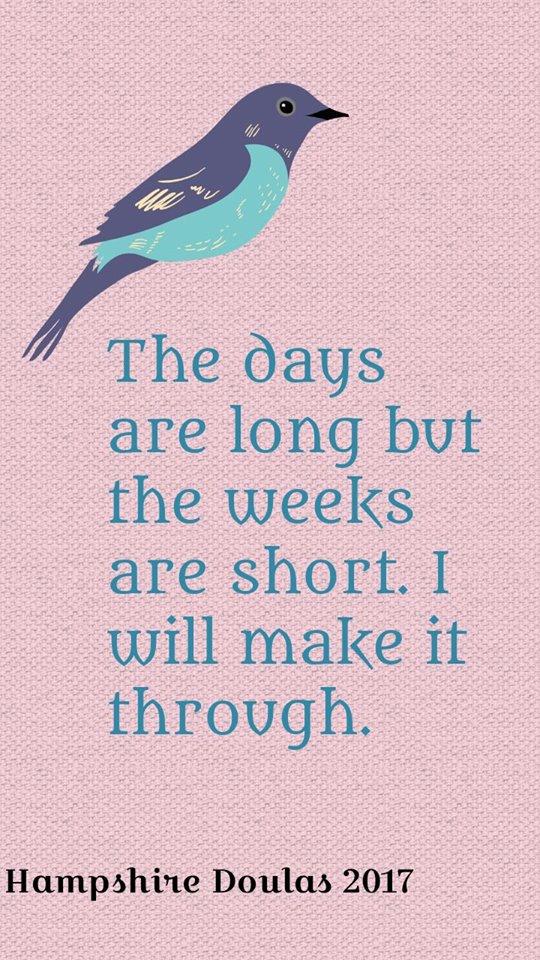 shortweeks